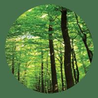 Commission 3 : Peut-on réconcilier croissance et environnement ?