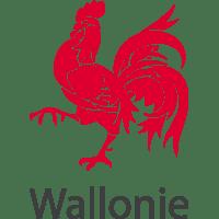 Gouvernement wallon